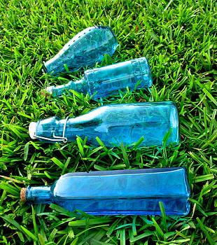 Blue Bottles by Dana Doyle