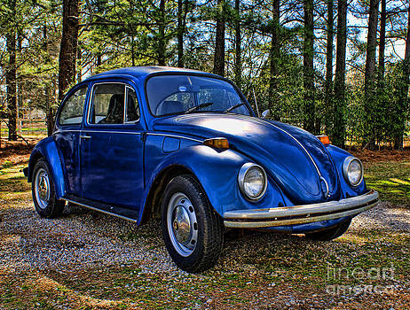 Blue Bug by Julia Dressler