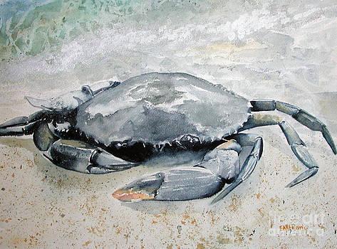 Blue Crab by Elizabeth  McRorie