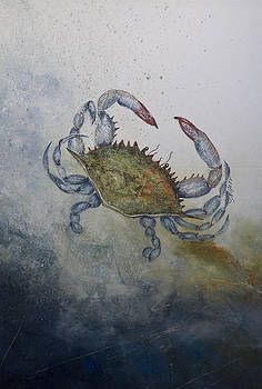 Blue Crab Print by Nancy Gorr