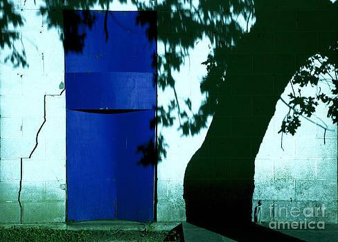 Blue door by Billy Lewis