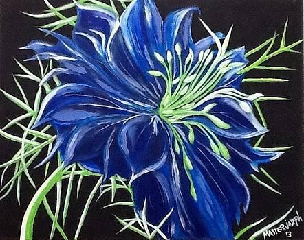 Blue flower by Anthony Masterjoseph