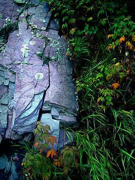 Blue Granite by Ric Soulen