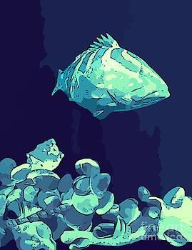 John Malone - Blue Grouper