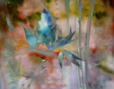 Blue Heaven by Carol Kinkead