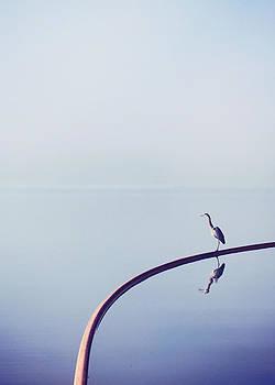 Blue Heron by Jessie Gould