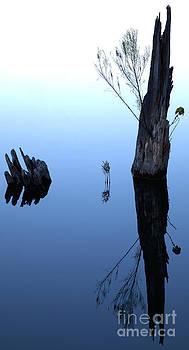 Blue hue by Billy Lewis