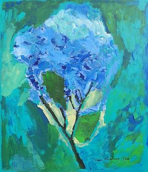 Blue Hydrangia by Harry Hartshorne Jr