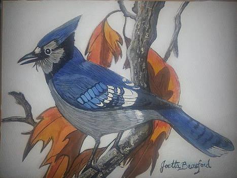 Blue Jay at Fall by Joetta Beauford