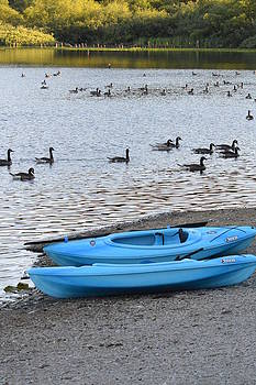Nicki Bennett - Blue Kayaks on the Shore