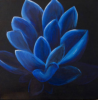 Blue Lotus flower on black canvas by Megan Sax