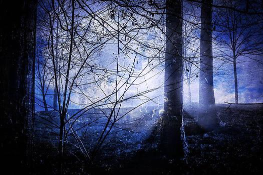 Blue Mist by Rod Kaye