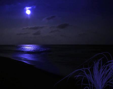 Blue Moon by Joseph Tese