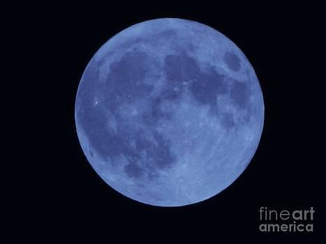 Blue Moon by K L Roberts