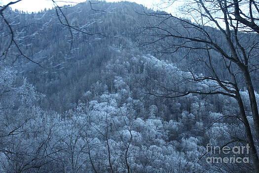 Blue Mountain by Jeanne Forsythe