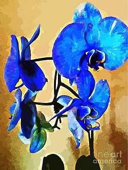 Blue Orchid  by Judy Palkimas