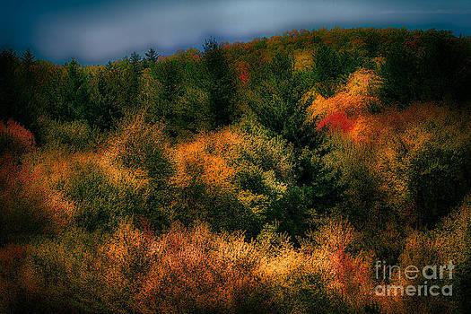 Dan Carmichael - Blue Ridge at Night