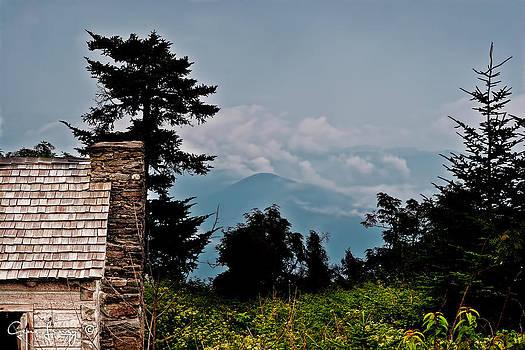 Blue Ridge Cabin by Gene Linzy