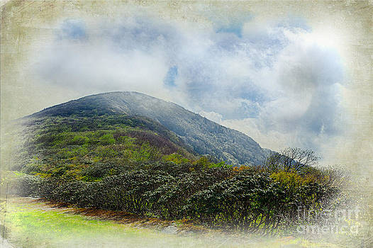 Dan Carmichael - Blue Ridge Craggy Dome in Fog