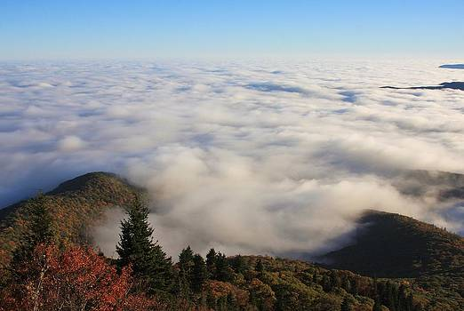 Blue Ridge Parkway Sea of Clouds near Graveyard Fields by Michael Weeks