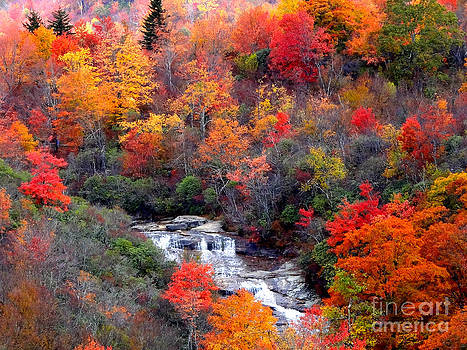 Blue Ridge Parkway Waterfall In Autumn by Crystal Joy Photography