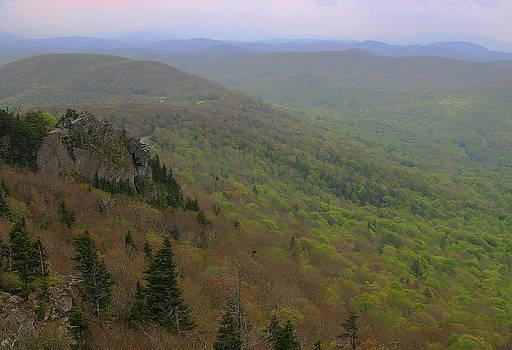 Karol Livote - Blue Ridge View 3