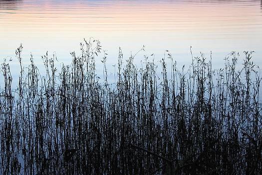 Blue Shadow Horizontal  by AR Annahita