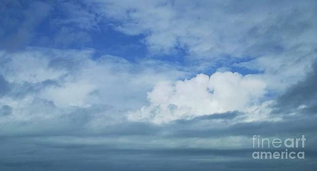 Blue Skies by Diane  Miller