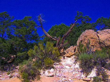 Blue Sky Over the Canyon by Dany Lison