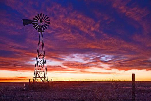 Blue Sunrise by Shirley Heier