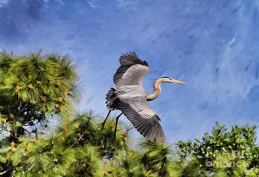 Deborah Benoit - Blue Tree Hopping