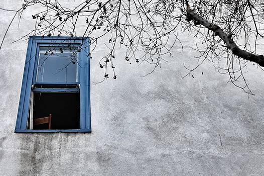 Blue Window by Diana Shay Diehl