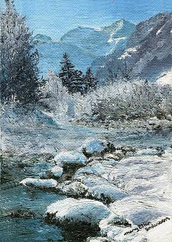 Blue Winter by Mary Ellen Anderson