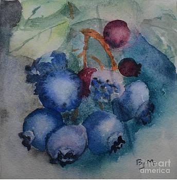 Blueberries by Betty Mulligan