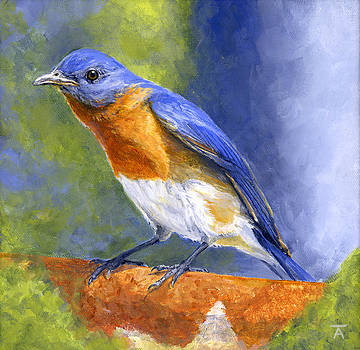Bluebird by Tracy Anderson