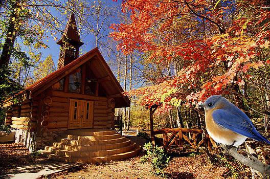 Randall Branham - Bluebird Wedding Quaint Mountain Church
