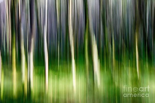 Blurred by Juergen Klust