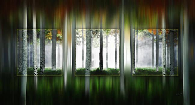 Blurring The Lines by John Robichaud