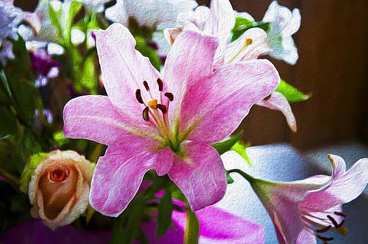 Blushing Pink by Denise Teague