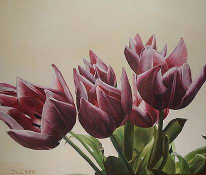 Blushing Tulips by Cherise Foster