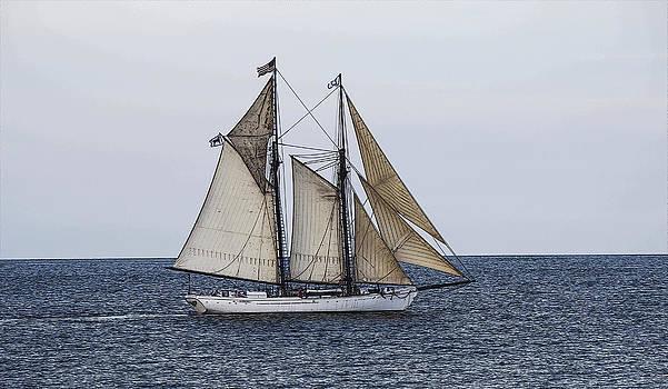 Boat 1 by Michel DesRoches