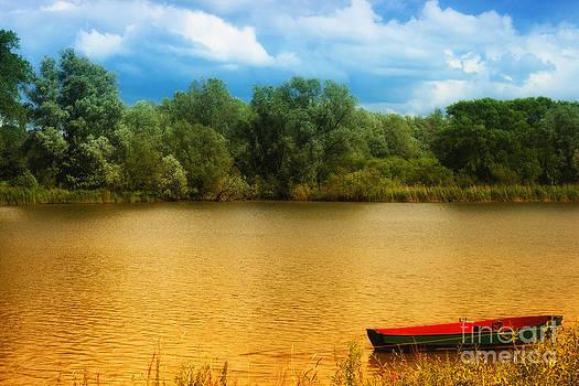 Nick  Biemans - Boat on a golden pond