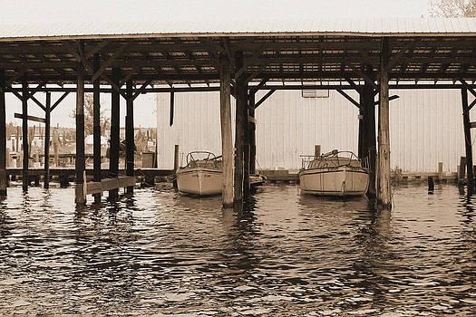 Boat Shed by Carolyn Ricks