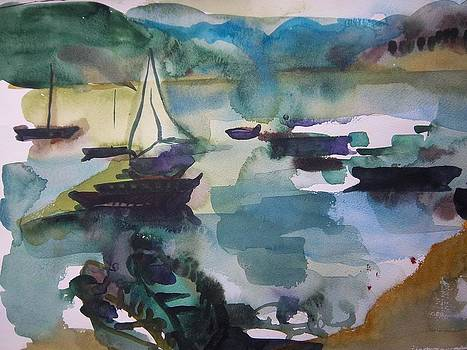 Boats in Pokhara by Carrie Williams