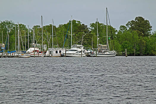 Boats on the Pasquotank by Carolyn Ricks
