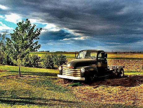 Bob's Old Chevy Truck in the Spring by Julie Dant