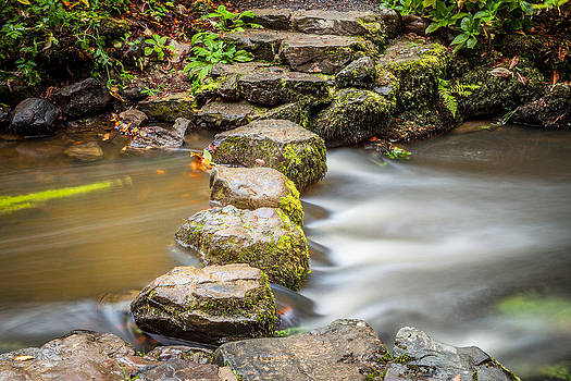 Stepping Stones by Christine Smart
