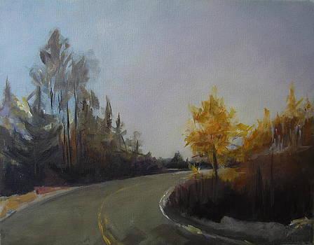 Bogus Basin Road by Terri Messinger