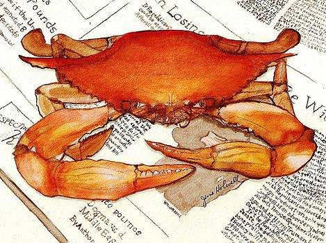 Boiled Crab by June Holwell