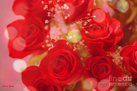 Cheryl Young - Bokeh Roses